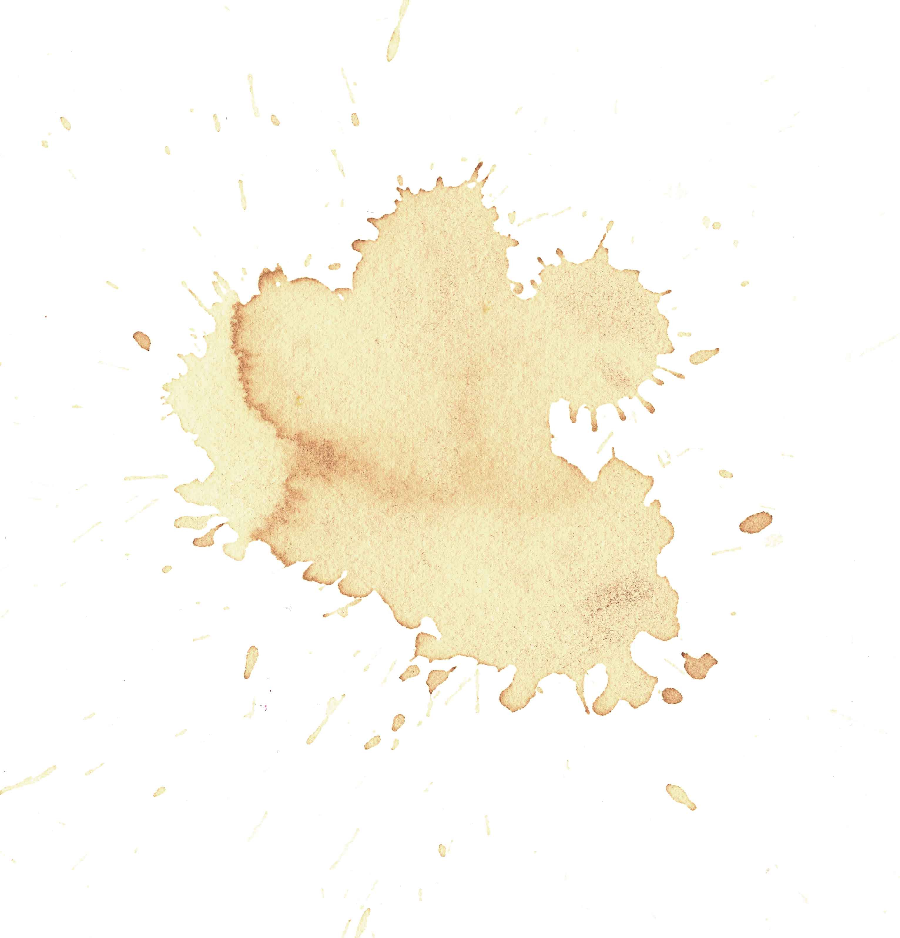 inch Coffee stain drawing